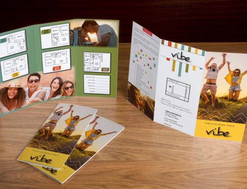 Vibe Brochure